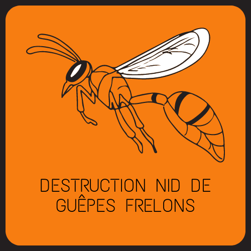 destruction nid de frelon guepes 83 Var